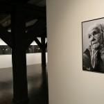 Wystawa W stronę człowieka, fot. K. Napiórkowski (3)
